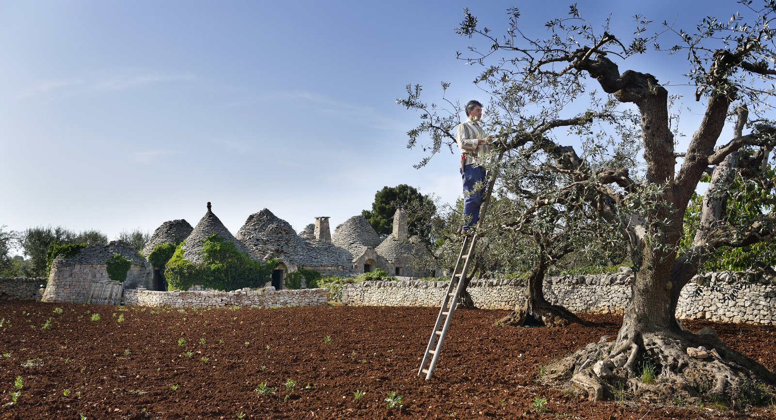 Puglia: Food and Culture
