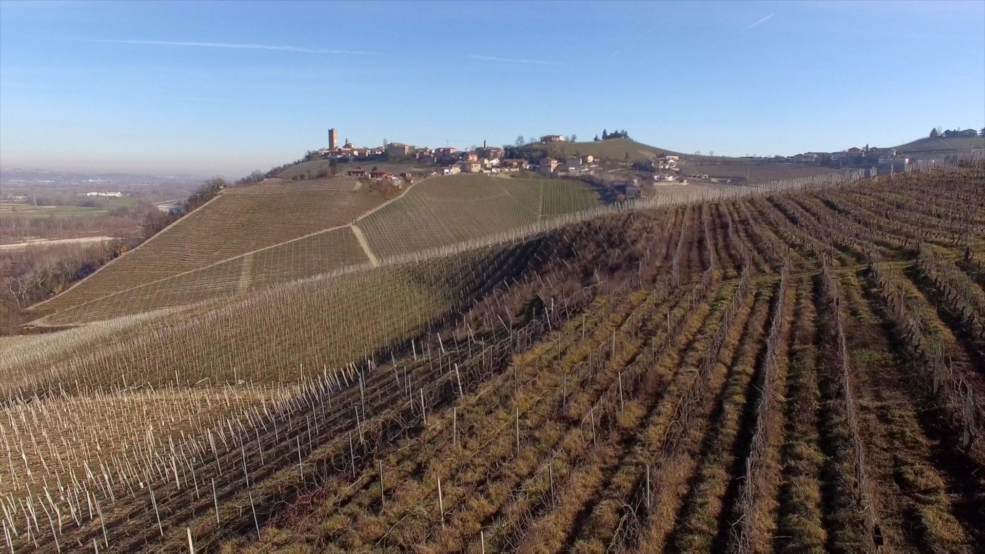 Gaja. Barbaresco winery in Piemonte